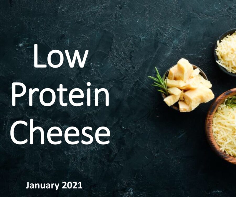 Low Protein Cheese